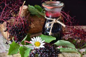 elder - sambucus nigra - berries and juice