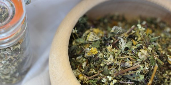 woemwood - artemisia absinthium - dried herb