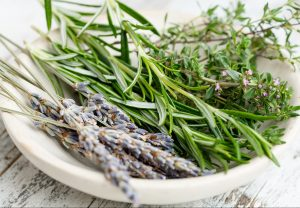 Herbal allies: how to choose the right plants to work with