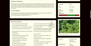 monograph: botanical description & interesting facts