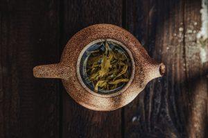 tea shrub - camellia sinensis - dried tea